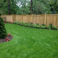 Fence & Landscaping